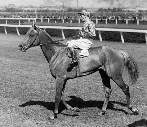 1932 & 1934 Melbourne Cup winner Peter Pan ridden by jockey Darby Munro
