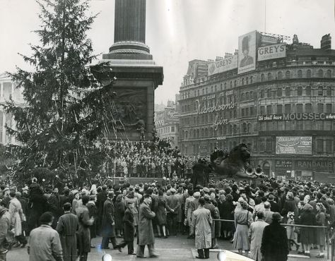 18 December 1947, a Norwegian christmas tree arrived for the first time in London, to be placed in the middle of Trafalgar Square.