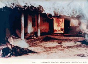 Unidentified bodies near burning house. My Lai, Vietnam. March 16, 1968.