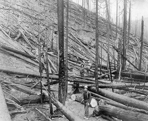 St Joe Idaho Fire 1910
