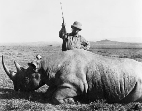After serving as US President, Theodore Roosevelt went on a safari and trapped or shot over 11 000 animals.