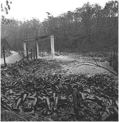 tasmanian-bushfire-1967-cascade-brewery-destroyed