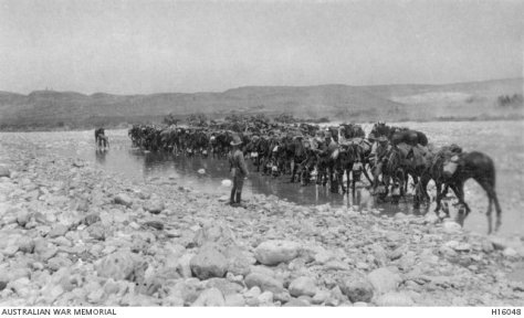 #OTD in 1917 Light Horsemen charge Turkish positions at Beersheba & seize critical wells enabling the British to break the Ottoman line #ww1 Australian War Memorial Canberra First World