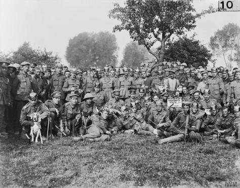 The_Battle_of_the_Somme,_July-november_1916_Q130Battle of Albert. Officers and men of the 10th Battalion, Notts. and Derby Regiment with wearing captured German helmets; the dog was foun