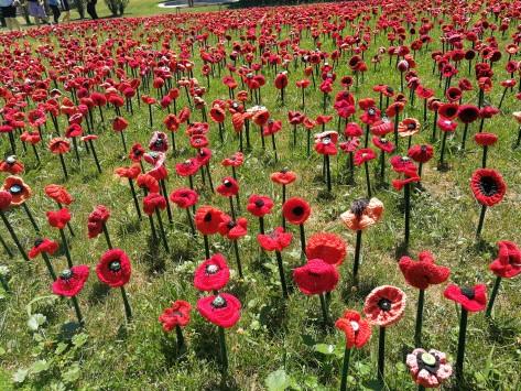 Thousands of Poppies First world War One Sonya Heaney  11th November 2018 Australian War Memorial Canberra.jpg