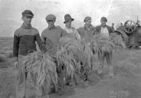 Ukrainians are photographed harvesting in Separator, Saskatchewan, Canada in 1915. At this point in time Ukrainians were forced to register as enemy aliens and many were put into concentration camps to perform forced labour.